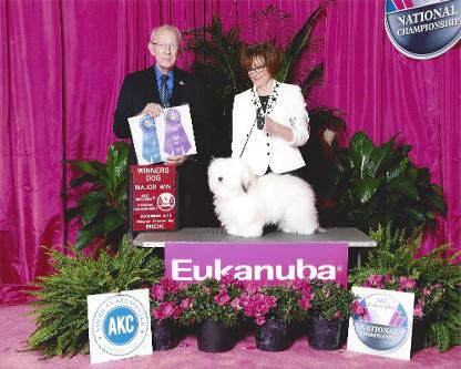 Eukanuba-Dog-Show